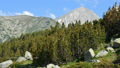 hiking in Pirin
