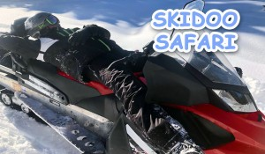 Skidoo Safari